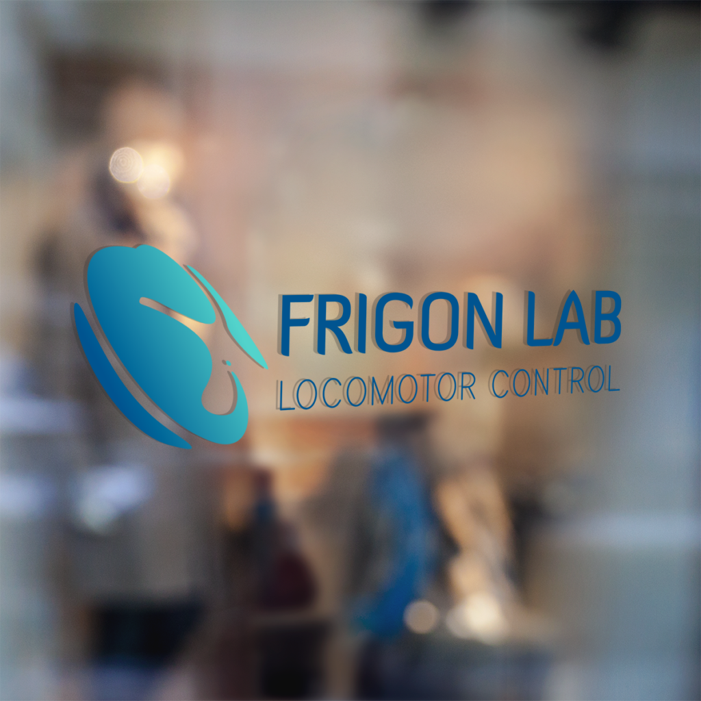 portfolio Frigon Lab